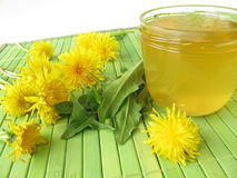 Dandelion flower jam Royalty Free Stock Image