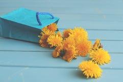 Dandelion flowers in blue bag Royalty Free Stock Images