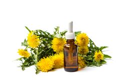 Dandelion flowers and essential oil isolated. On white royalty free stock photo