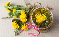 Dandelion flowers and homemade oil top view royalty free stock photography