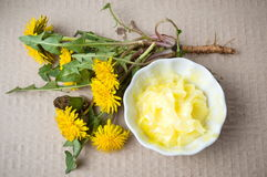 Dandelion flowers with homemade salve top view Royalty Free Stock Photo