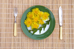 Dandelion flowers and leaves healthy spring time natural vegetarian food Royalty Free Stock Photo
