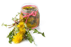 Dandelion flowers and oil. In a jar royalty free stock image