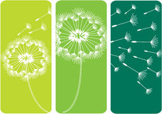 Dandelion Flowers Silhouettes Royalty Free Stock Photo