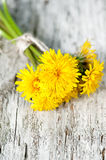 Dandelion flowers on the wooden background Stock Image