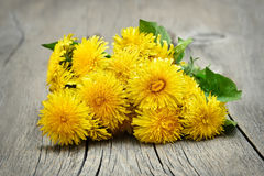 Dandelion flowers on wooden background Royalty Free Stock Images