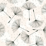 Dandelion fly Stock Image