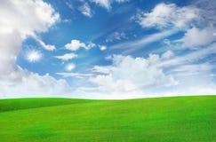 Dandelion flying over grass plain Stock Photos