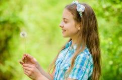 Dandelion foluj?cy symbolizm lata zabawy Folklor wiary o dandelion Dziewczyna wie?niaka stylowy robi ?yczenie i dmuchanie fotografia royalty free