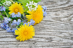 Dandelion and forget-me on a wooden background.  Royalty Free Stock Photo