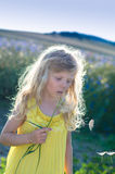 Dandelion fundindo da menina imagem de stock royalty free