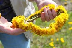 Dandelion garland Royalty Free Stock Image