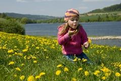 The dandelion girl Royalty Free Stock Photo