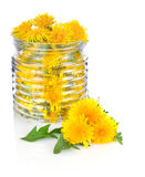 Dandelion in glass jar with green leaves Royalty Free Stock Photography