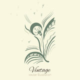 Dandelion graphic vector illustration isolated on background with space for text Royalty Free Stock Photos