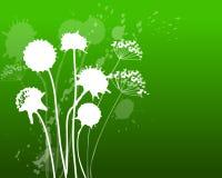 Dandelion green. Inkblot dandelion in a green gradient Royalty Free Stock Photos