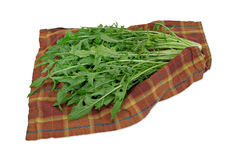 Dandelion greens. Washed dandelion greens drying on towel royalty free stock photo
