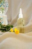 Dandelion hair oil Royalty Free Stock Photo
