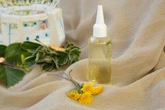 Dandelion hair oil Stock Photography