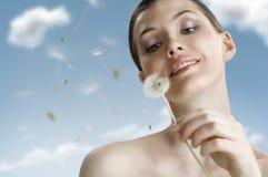 Dandelion in hand Stock Images