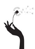 Dandelion in a hand stock illustration