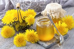 Dandelion honey in a jar Stock Photos