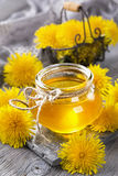 Dandelion honey in a jar Royalty Free Stock Photos