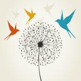 Dandelion i ptak Zdjęcie Royalty Free