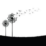 Dandelion illustration art in nature Royalty Free Stock Image