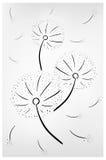 Dandelion illustratration Royalty Free Stock Photo
