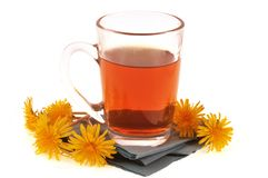 Dandelion infusion in a glass. Dandelion flowers around a glass of natural herbal tea stock photos