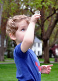 Dandelion Inspection. A two-year-old toddler holds a dandelion up for an examination Stock Photography