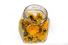 Dandelion jam in a glass jar Royalty Free Stock Photos