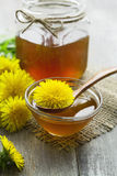Dandelion jam Royalty Free Stock Photos