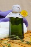 Dandelion juice Stock Photos