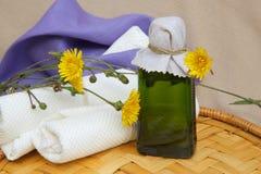 Dandelion juice Royalty Free Stock Images