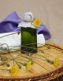 Dandelion juice Royalty Free Stock Photography