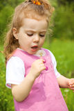 Dandelion kid Royalty Free Stock Photo