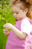 Dandelion kid Royalty Free Stock Photo
