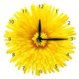 Dandelion kwiat - zegar. ilustracji