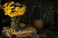 Dandelion kwitnie na nieociosanym drewnianym tle Rocznika wciąż li Zdjęcia Stock