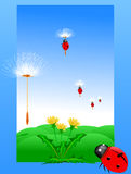 Dandelion and ladybug on a green meadow Vector Stock Photos
