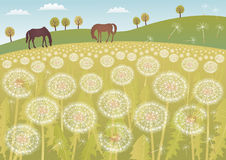 Dandelion landscape Royalty Free Stock Photo