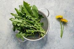 Dandelion leaves in colander. Freshly picked dandelion leaves in colander stock photography