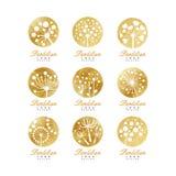 Dandelion loga szablonu set, piękna natury odznaka dla twój swój projekta wektoru ilustracje royalty ilustracja