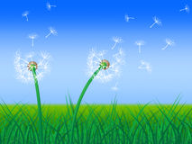 Dandelion nieba przedstawień zieleni trawa I paśnik royalty ilustracja