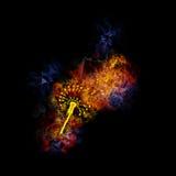 dandelion notatki ogniste muzykalne ilustracja wektor