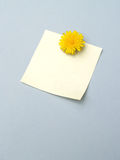 Dandelion Note 2 Royalty Free Stock Photography