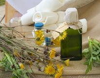 Dandelion oil Royalty Free Stock Photo