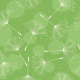 Dandelion pattern design Royalty Free Stock Photography